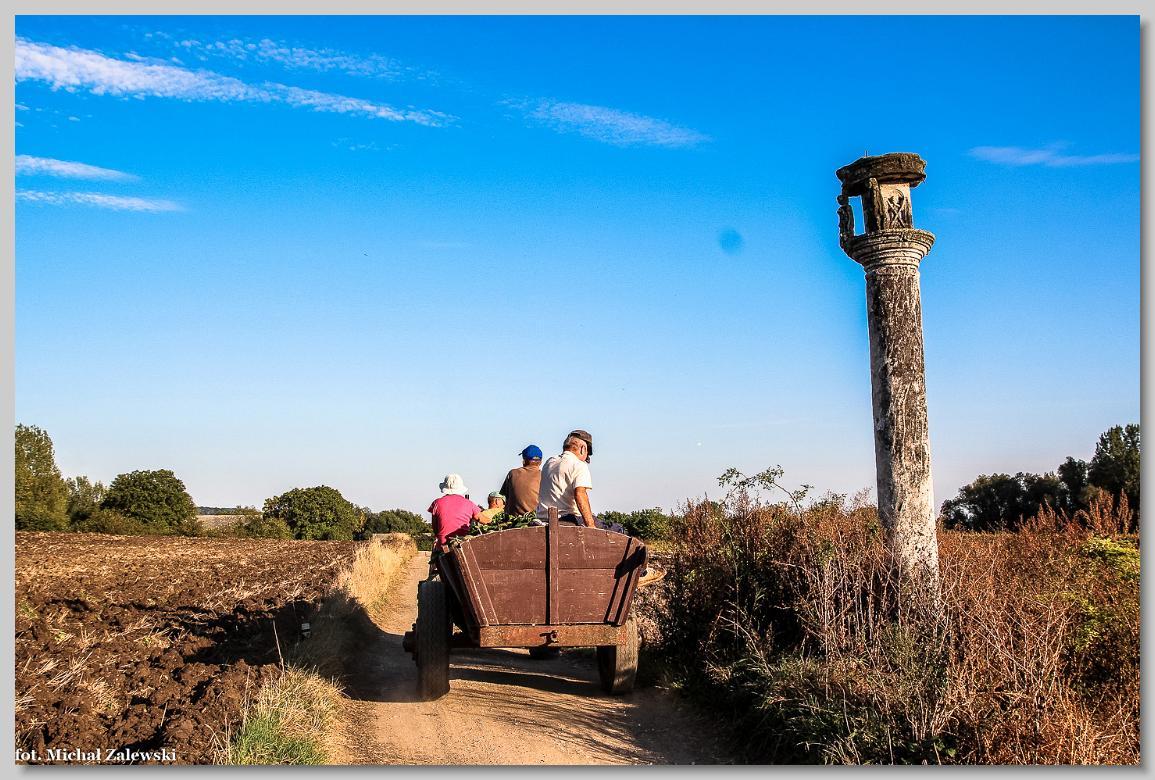 Kolumna pasyjna z końca XVII w. koło Kikowa w pow. buskim